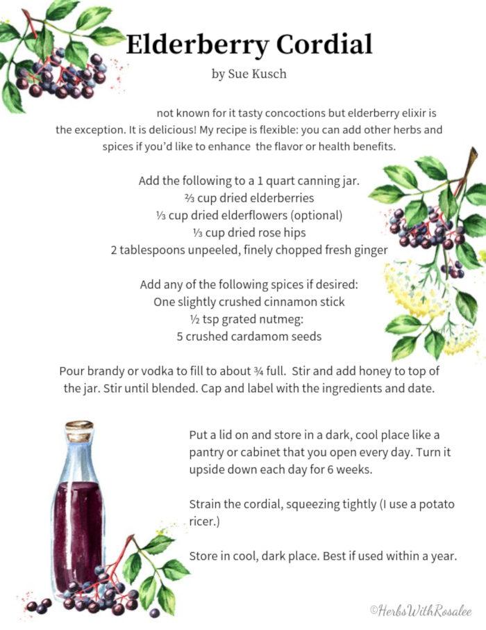 elderberry cordial recipe