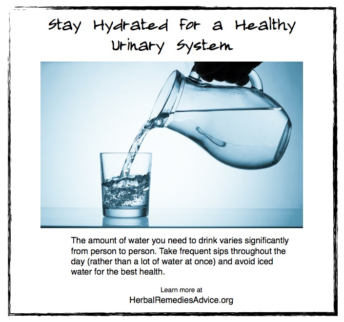 Stay Hydrated for a Healthy Urinary System