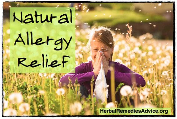 Organic Allergy Relief