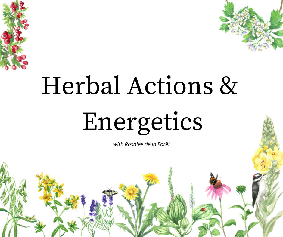herbal actions