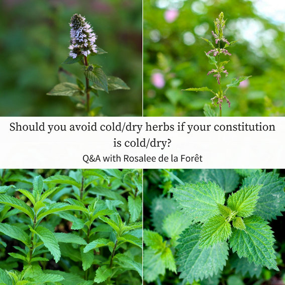 cold dry constitution