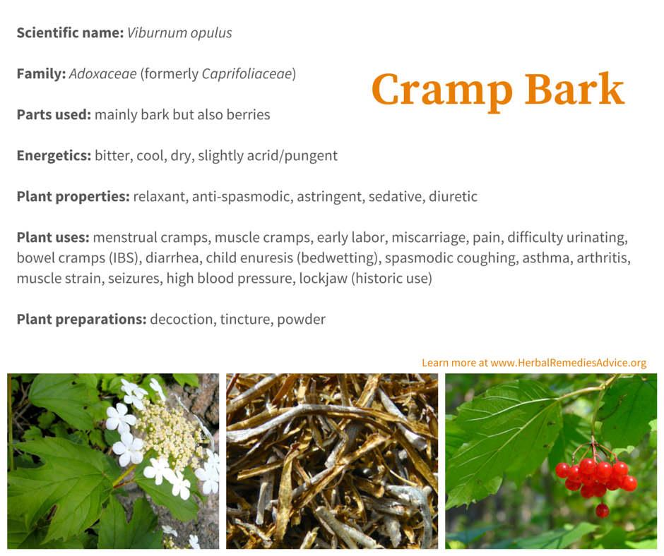 Viburnum opulus uses