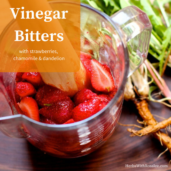 Vinegar Bitters