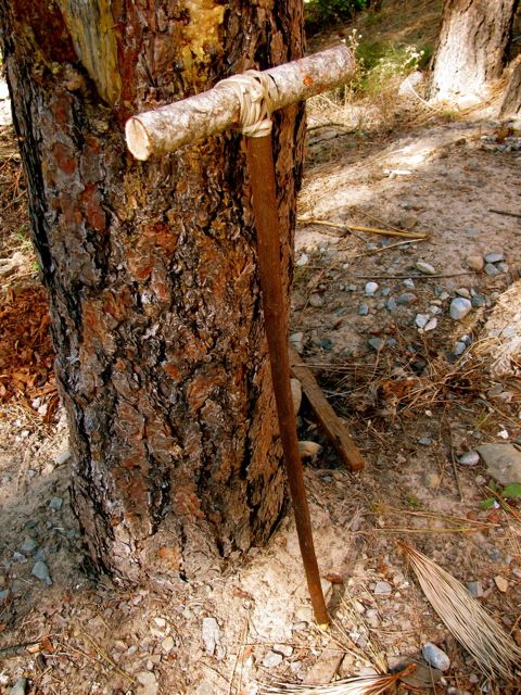 Traditional Digging Stick