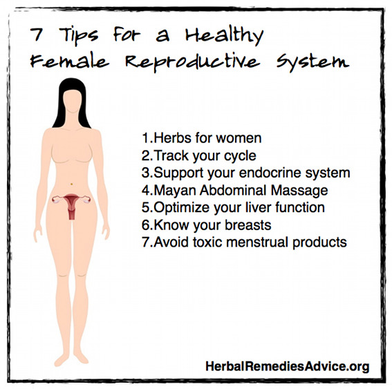 Female Reproductive System Health