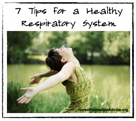 Healthy Respiratory System
