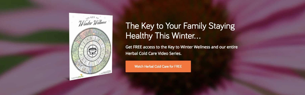 Herbal Cold Care