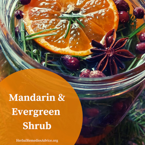 mandarin shrub recipe