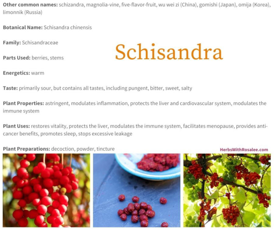 schisandra health benefits