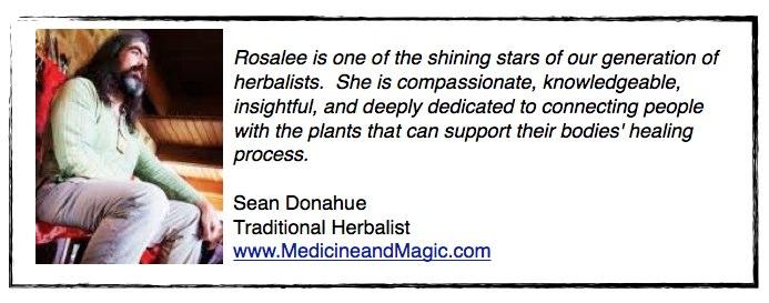 Testimonial from Sean Donahue