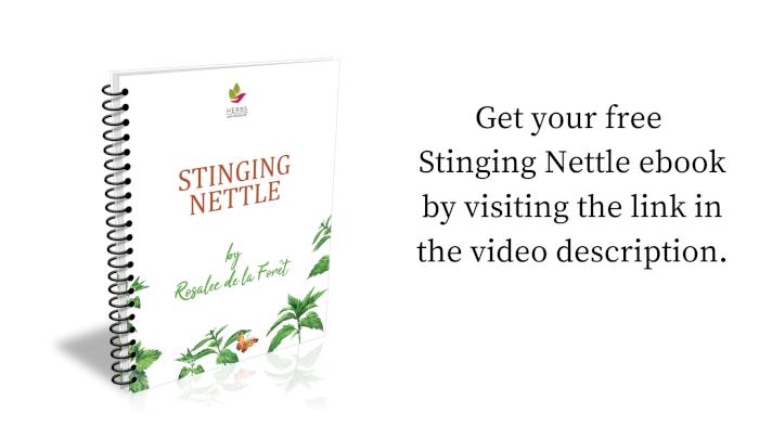 Stinging Nettle Ebook