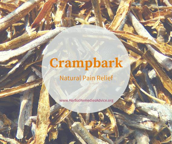 Cramp Bark