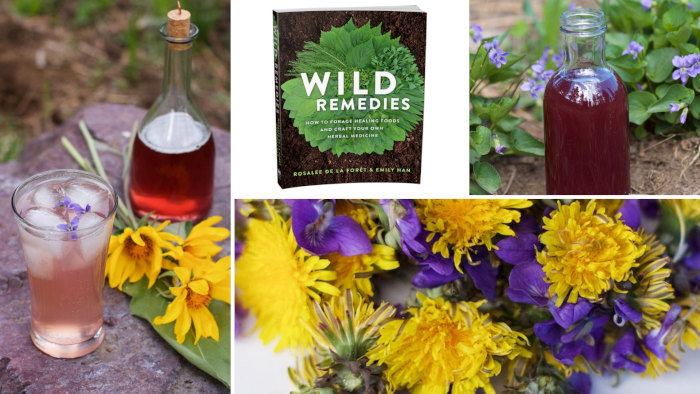 Wild Remedies and Violets