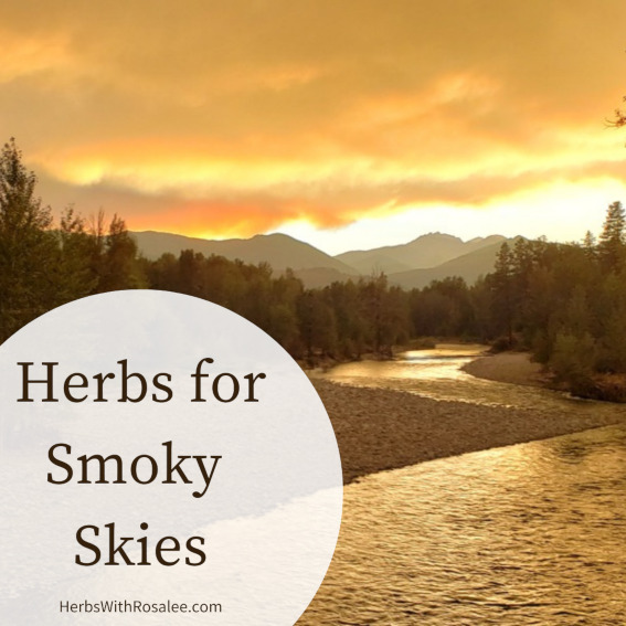 herbs for wildfire smoke
