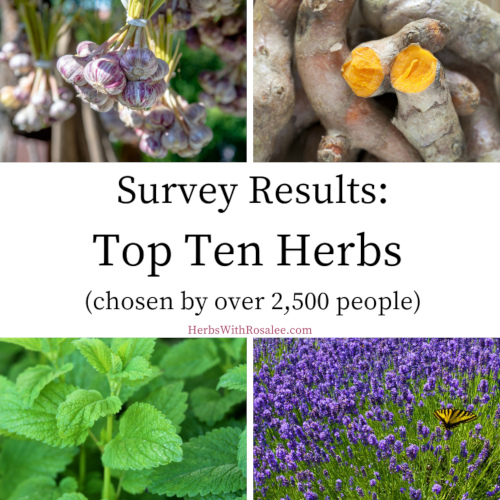 most used herbs survey 2020