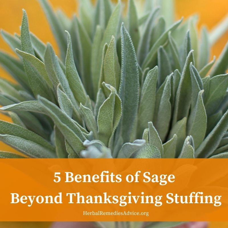 What is sage good for
