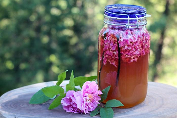 rose hips recipe