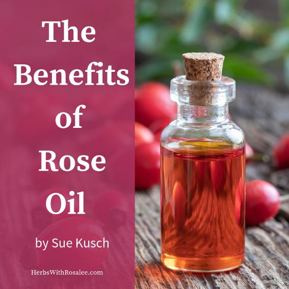rose hips oil