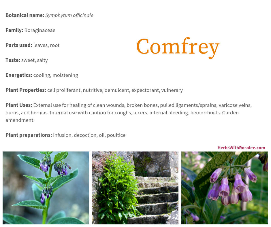Benefits of Comfrey