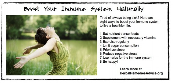 Immune system boosters are essential to maintaining vibrant health.