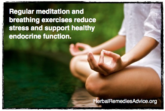 Regular meditation and breathing exercises support healthy endocrine function