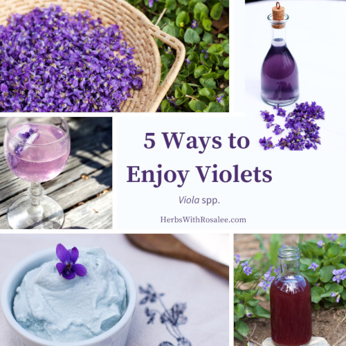 violet recipes