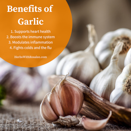 garlic as medicine